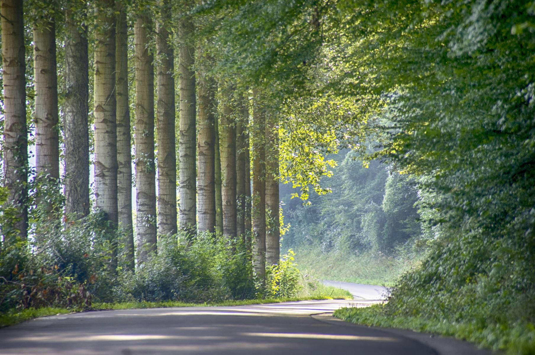 Par un beau week-end en Champagne-Ardennes
