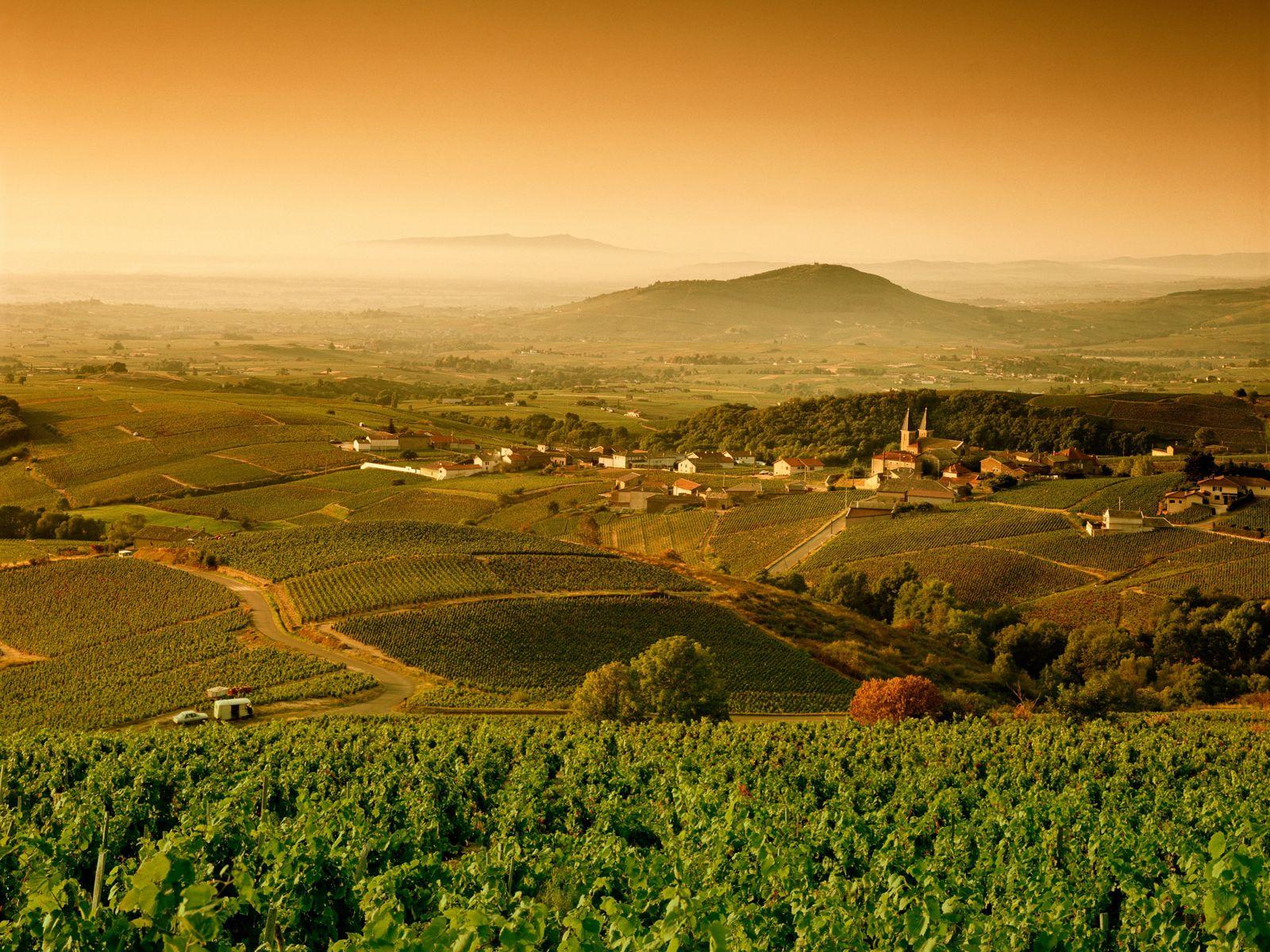 La Bourgogne: des Monts du Jura aux Vignobles de la Côte d'Or