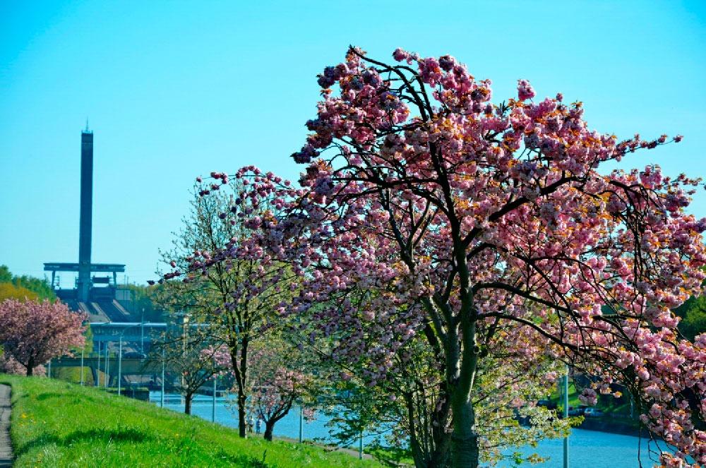 Spring Outing à la découverte du 'Parc des Canaux et Châteaux'